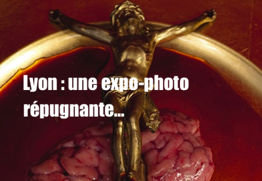 Lyon : une exposition abominable…