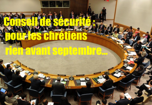 Conseil de sécurité : pour les chrétiens du Moyen-Orient on agira… en septembre