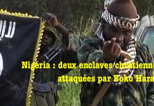 Deux enclaves chrétiennes attaquées par Boko Haram au Nigéria : 29 morts