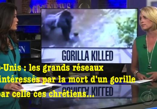 États-Unis : les grands réseaux plus intéressés par la mort d'un gorille que par celle des chrétiens !