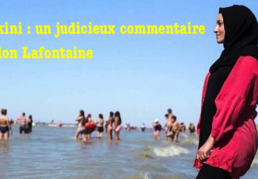 Burkini : judicieux commentaire d'Odon Lafontaine…