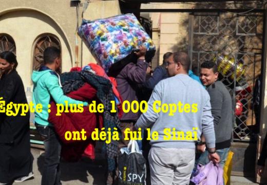 Égypte : plus de 1 000 Coptes ont déjà fui le Sinaï