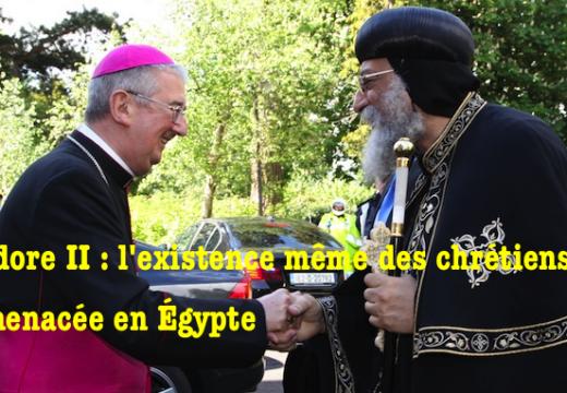 Égypte : désormais, les chrétiens luttent pour leur existence même déclare Théodore II
