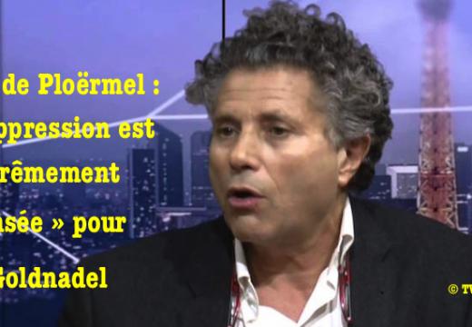 Me Goldnadel : la décision de détruire la croix de Ploërmel est « suprêmement insensée »