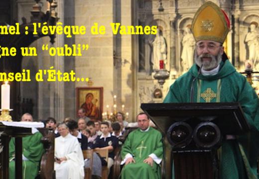 """Ploërmel : l'évêque de Vannes souligne un """"oubli"""" du Conseil d'État"""