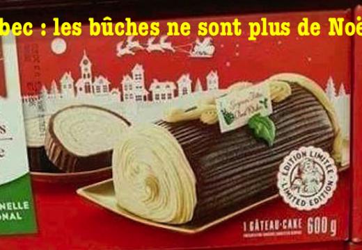 Québec : de curieuses « Bûches des fêtes »…