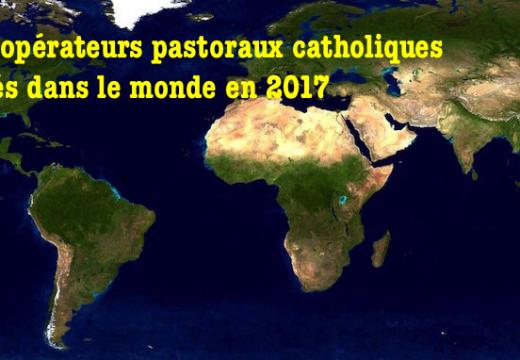 23 opérateurs pastoraux catholiques tués dans le monde en 2017