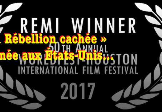« La Rébellion cachée » : Remi Winner 2017 !